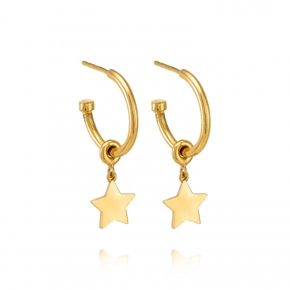Small Star hoops